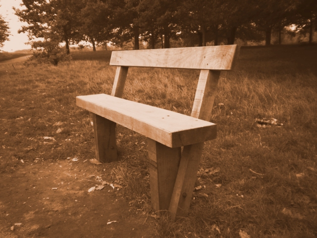 Wooden Chair at Regents Park